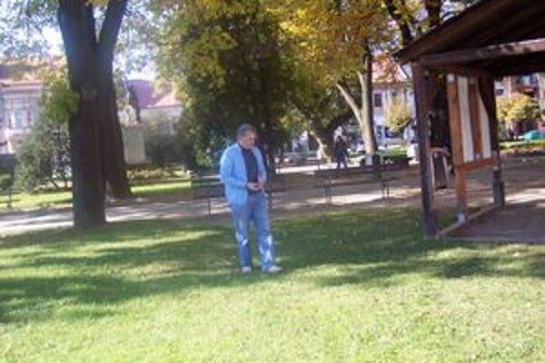 Pagaštany rastú priamo v centre Brezna.