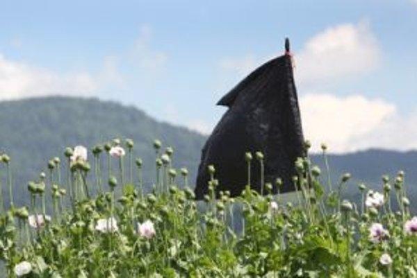 Symbolická čierna plastová vlajka nad políčkami. Obyvatelia veria, že s ňou kvôli diviakom neumrie aj chuť obhospodarovať okolité polia