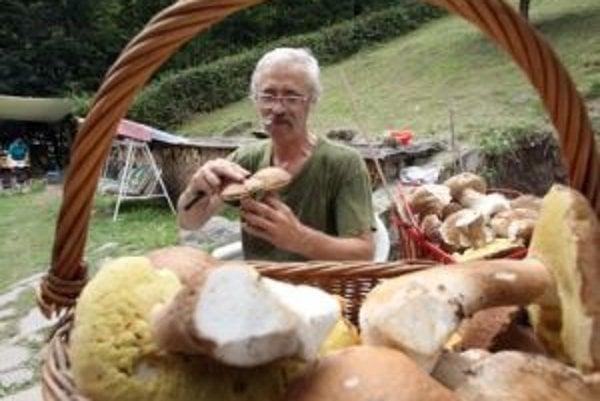 Aj huby sú chutnou lesnou pochúťkou - a práve rastú.