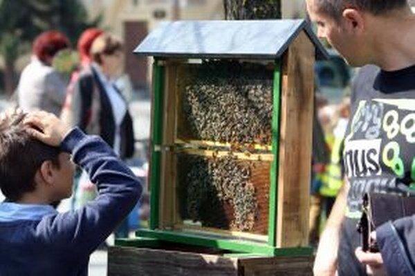 Ani si neuvedomujeme, za čo všetko včelám vďačíme.