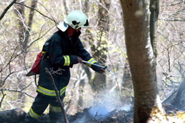 Pred dvoma rokmi bojovalo s požiarom pod Donovalmi stotridsať hasičov.