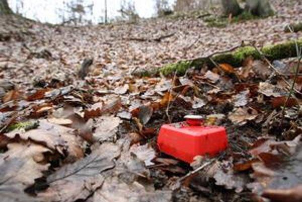 V lese nad Detvou sú stopy po skúšobných vrtoch.