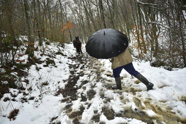 Nasnežilo aj v španielskom mestečku Madoz neďaleko Pamplony.