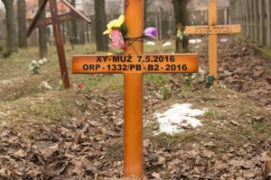 V sektore bezmenných sú pochovaní bezdomovci, utečenci aj obete vylovené na bratislavskom úseku Dunaja.