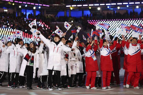 Športovci z kórejských republík.