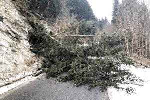 Cestu medzi Dolným Kubínom aOravskou Porubou zatarasili stromy azem.