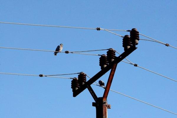 Na elektrickú sieť sa muž pripojil nelegálne.