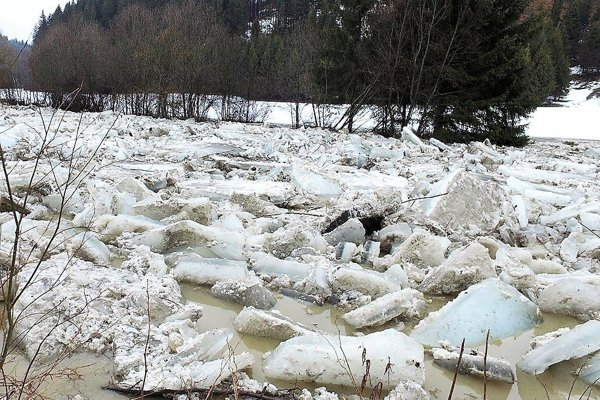 Ľadochod na Bielej Orave, február 2017