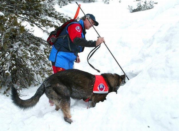 Bez cenných pomocníkov - cvičených psov sa nezaobíde žiaden veľký zásah.