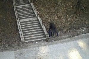 Fotopasca usvedčila páchateľa.