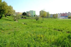V areáli ZŠ by malo byť už v októbri sprevádzkované nové futbalové ihrisko s umelým trávnikom.