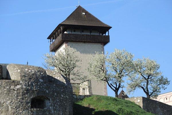Pohľad z Čerešňového sadu na Trenčiansky hrad.