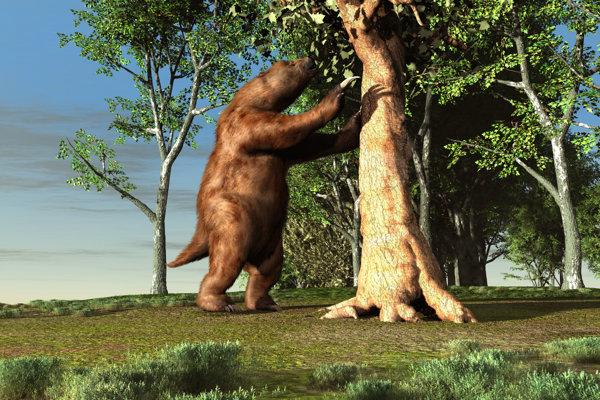 Prehistorický leňoch bol nebezpečné zviera, veľkosťou sa mohol porovnávať s medveďom aj slonom.
