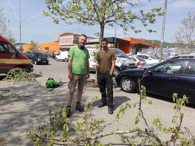 Arboristi Michal Beňo a Marek Áč.