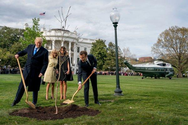 Trump s Macronom v záhrade Bieleho domu sadia strom.
