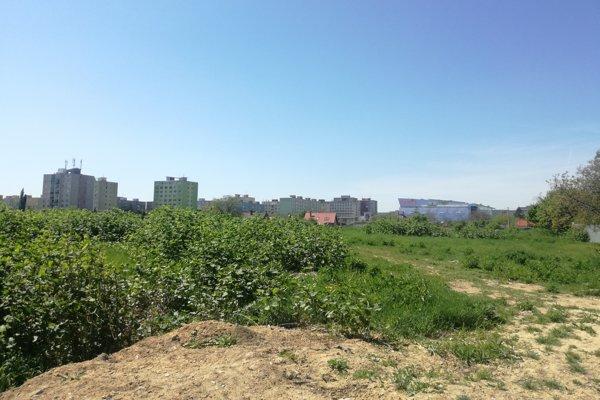 Asanačné pásmo. Obrovské zelené územie verejnosť roky obchádza bez povšimnutia.