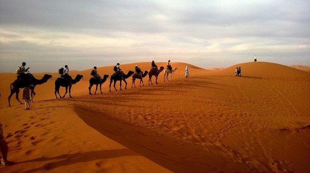 Púštne safari je obľúbeným programom počas dovolenky v Egypte.