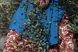 Olivov� olej zdra�el o p�tinu. �roda ol�v bola n�zka