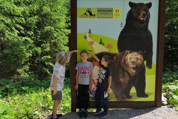 Fotografia smedveďom vživotnej veľkosti. Návštevníci sa knemu môžu postaviť aporovnať výšky.