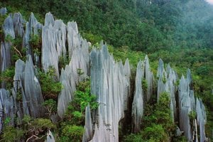 Vápencové útvary v Národnom parku Gunung Mulu v Borneu. Práve zvetrávanie vápenca môže produkovať významné množstvá dusíka.
