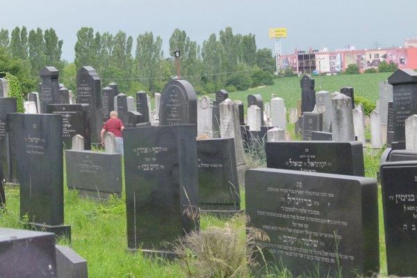 Na židovskom cintoríne v Leviciach je približne tisícka hrobov.