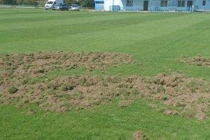 Futbalové ihrisko v Kľúčovom na jeseň rozryli diviaky.