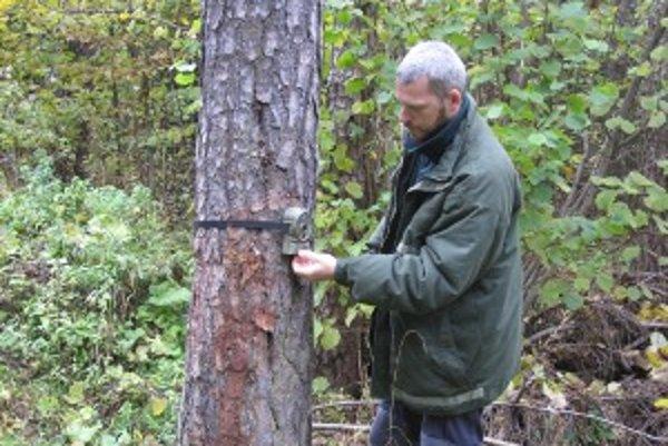 Fotopasca pri priviazaní na strom.