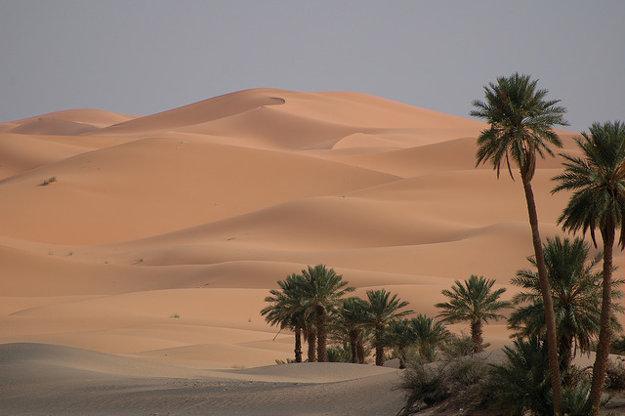 Maroko: Duny na okraji púšte.