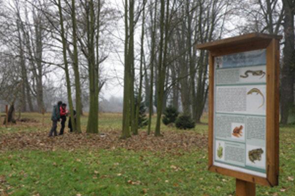 Na jeseň komisia v parku preskúmala porasty a určila tie, ktoré vyrúbu a nahradia novými.