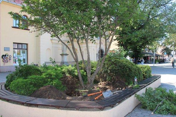 Strom už pred kostolom nieje.
