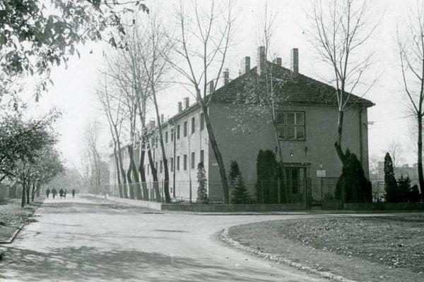 Škole v Kalnej nad Hronom robili v minulom storočí dobré meno predavači a aranžérky. Bola vtedy jedinou svojho druhu u nás.