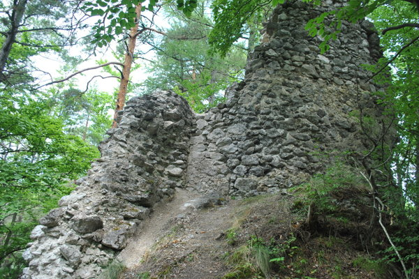 Zvyšky hradu Lipovce sú ukryté na zalesnenom hrebeni priamo nad známou Lačnovskou tiesňavou.