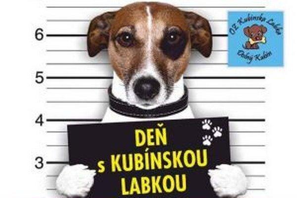 Majitelia psov by na tomto podujatí nemali chýbať.