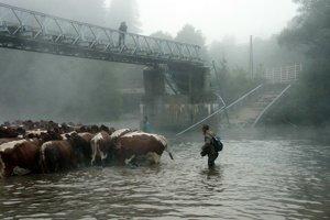 V roku 2004 sa most ponad Oravu vHornej Lehote preboril pod nákladiakom plnom dreva. Do sprejazdnenia premostenia museli pastieri hnať cez rieku aj družstevné kravy.