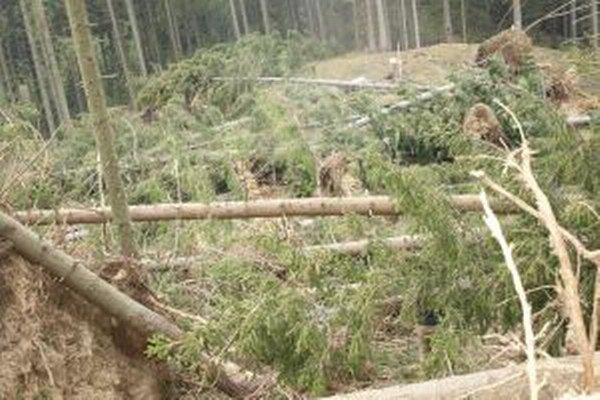 Vietor narobil škody aj na súkromných pozemkoch Oravskobielopotočanov.
