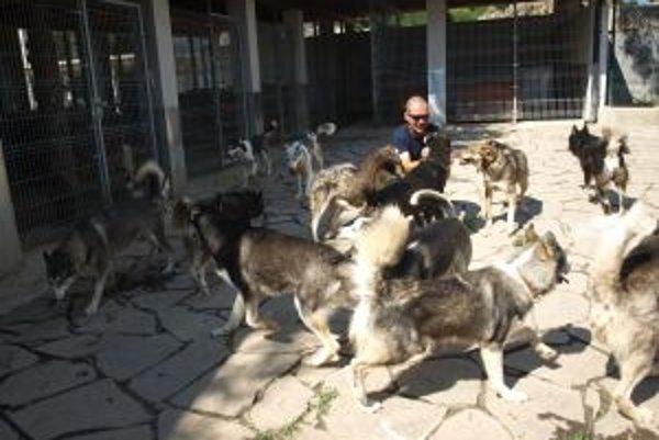 Peter svoje psy miluje, v lete s nimi denne trávi minimálne tri hodiny, v zime skoro celé dni.