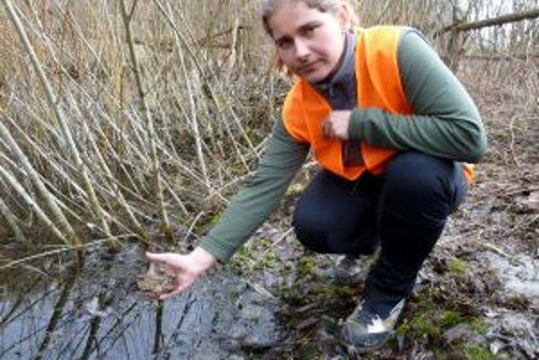 Anna Dzivá s prvými zachránennými žabami.
