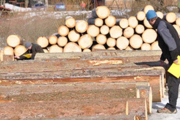 Kvalitné drevo má mať v centimetri rezonančnej vrstvy štyri až desať letokruhov.