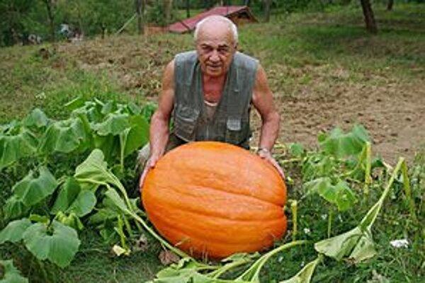 Jozefovi Bičanovi sa úroda vydarila. Dyňa má 45 kilogramov.