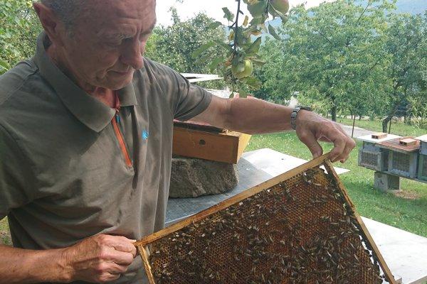 Ján Píš sa venuje včelárstvu už dlhé roky.