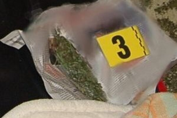 Pri domovej prehliadke v Dolnom Kubíne zaistili policajti sušené konope.