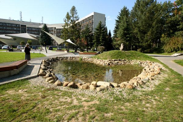 Jazierko pri univerzite.