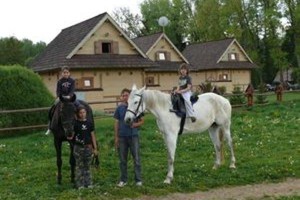 Kone sú krásnym, ale zároveň náročným koníčkom.