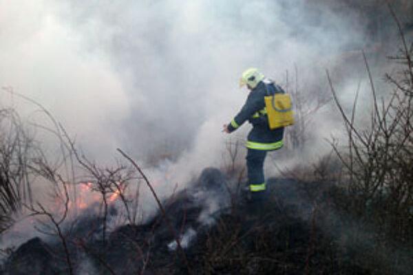 Keď sa plamene z trávy nekontrolovane rozšíria, neraz dochádza k ťažko zvládnuteľným požiarom blízkych porastov alebo lesa.