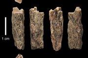 Kostný úlomok Denisova 11 našli v jaskyni v roku 2012 ruskí archeológovia. Kosť patrí potomkovi neandertálskej matky a otca Denisovana.