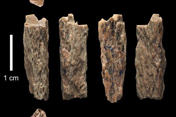 Kostný úlomok, ktorý našli v jaskyni Denisova v roku 2012 patrí patrí potomkovi neandertálskej matky a otca Denisovana.