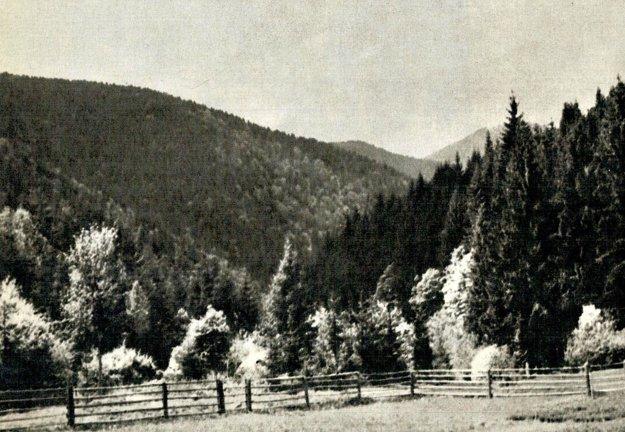 Kantorská dolina.