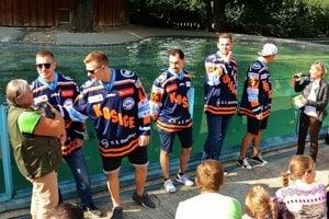 Oceliari krstili tučniaky v košickej zoo.