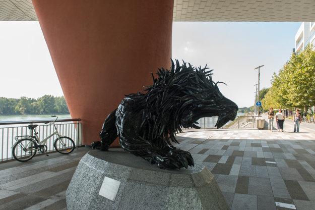 Lev kórejského umeleca Ji Yong Mo.
