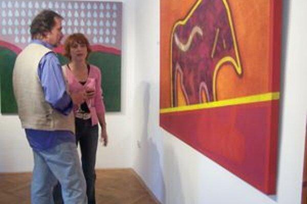 Kokoškova výstava právom púta pozornosť návštevníkov Turčianskej galérie.